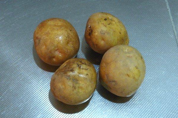 SiSO-LAB☆ニトスキ!ポテトのチーズ焼き、オーブン風仕立て。