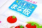 百均浪漫◆日本製!両面使える抗菌まな板。抗菌製品技術協会(SIAA)基準適合。 @100均 セリア