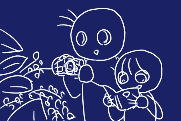 SiSO-LAB☆子どもと一緒に!ポケット版 木の実さんぽ手帳。