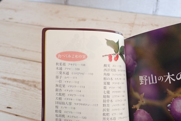 SiSO-LAB☆子どもと一緒に!ポケット版 木の実さんぽ手帳。目次。