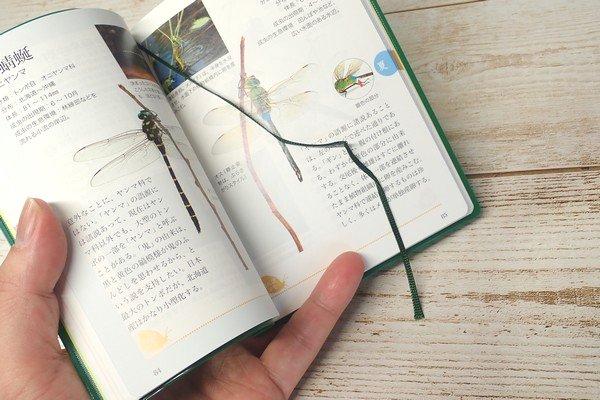 SiSO-LAB☆文庫簿サイズのポケット図鑑、雑草さんぽ手帖。しおり。