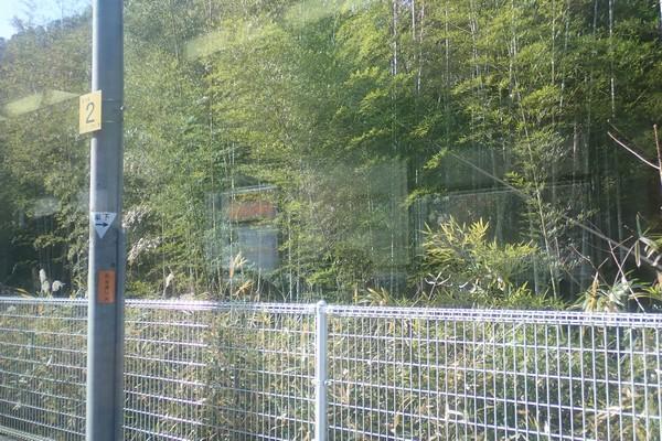 SiSO-LAB☆マルミPLフィルター、TG-5に装着。列車の車窓からサンプル撮影。