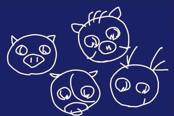 長崎県島原市のジビエ肉セット、ちんぜい猪のモモ肉スライスは薄めスライスなので普段の料理向けかな。