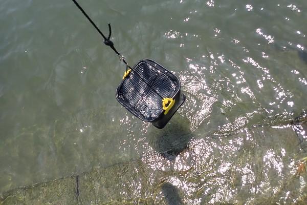 SiSO-LAB☆TAKAMIYA H.B CONCEPT 活かし水くみ ブラック 21cm。水満タンでも大丈夫。