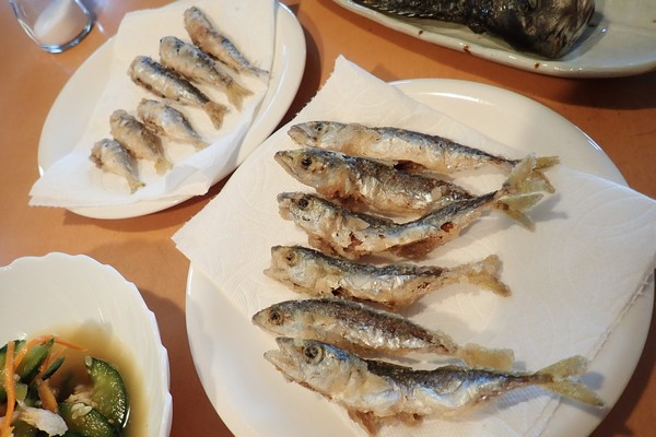 SiSO-LAB☆モリゲン エサつけ名人デビュー。アミエビがシパパパっとついておもしろい!今日の晩御飯。