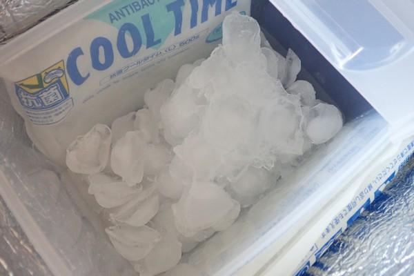 SiSO-LAB☆釣ネタ。小さなソフトクーラーバッグにバケツを入れてみる。氷もいれて。
