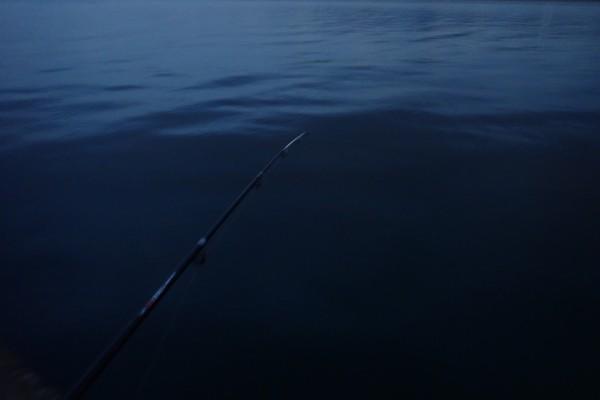SiSO-LAB☆釣・ダイソーのジグロックで初めてのルアーフィッシング。投げる、反応なし。