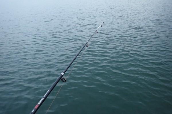 SiSO-LAB☆釣・ダイソーのジグロックで初めてのルアーフィッシング。海は広い。