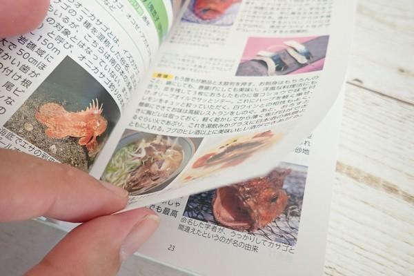 SiSO-LAB☆釣魚図鑑 豊田直之著。フルカラーでしっかりした紙。
