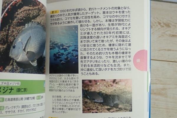 SiSO-LAB☆釣魚図鑑 豊田直之著。魚の紹介。釣り方、場所、食べ方まで。コラム風。