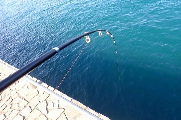 SiSO-LAB☆中華ノーブランド2.1M振り出し竿。釣り場デビュー。結構、先端固め。