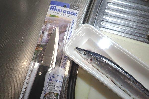SiSO-LAB☆100均小出刃包丁で魚を三枚おろし。早速やってみるよ。