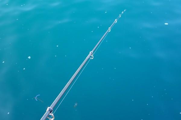 SiSO-LAB☆初春のサビキ釣り、どれくらい釣れるかな?釣れない…。
