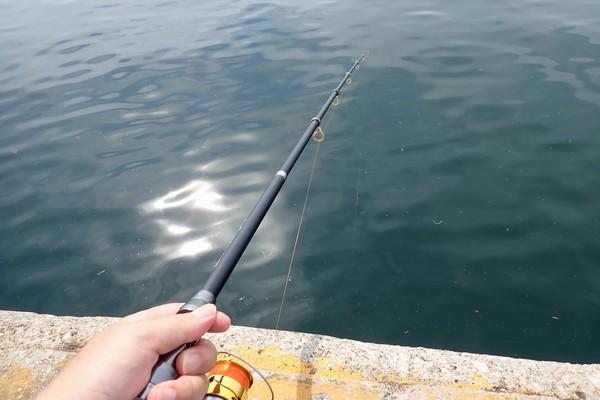 SiSO-LAB☆釣り!格安サビキ仕掛け、Riseway爆釣サビキ。さて、どうなることやら。