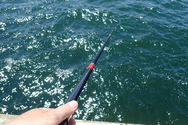 SiSO-LAB☆強風の中釣り。プロトラスト3-420、リール、デビュー。早速、釣り開始。コマセは無しでサビキ仕掛けのみ。