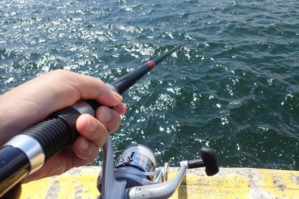 SiSO-LAB☆強風の中釣り。プロトラスト3-420、リール、デビュー。というわけで、今日は3時間ほど釣り。