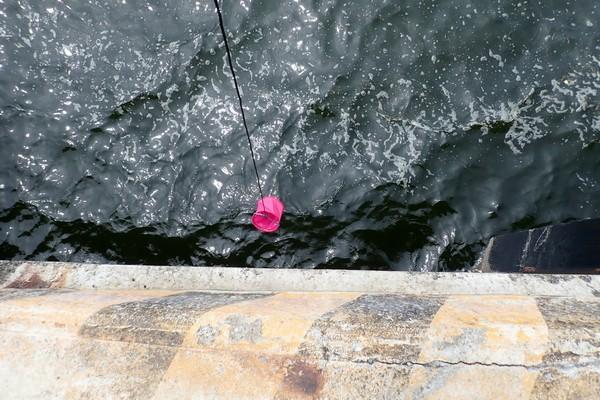 SiSO-LAB☆釣・小さな水汲みバケツ、かなり便利。タカミヤ Smile Ship カバー付き水汲みバケツ。SiSO-LAB☆釣・小さな水汲みバケツ、かなり便利。タカミヤ Smile Ship カバー付き水汲みバケツ。オモリ付きで水汲み簡単。