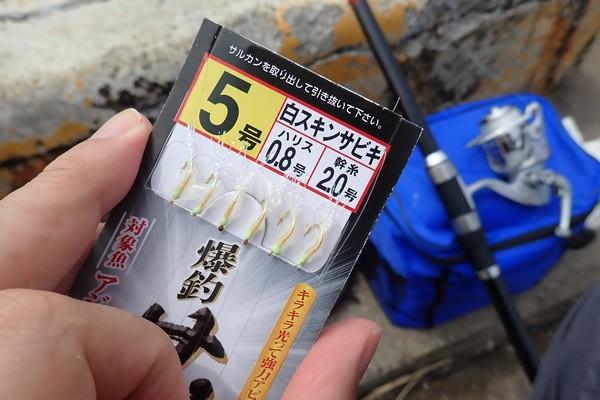 SiSO-LAB☆釣り。RISEWAY白スキン5号で小サバ釣り。どっちが上かわからない。