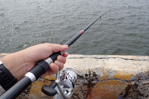 SiSO-LAB☆釣り。RISEWAY白スキン5号で小サバ釣り。エサ無し、オモリだけ。