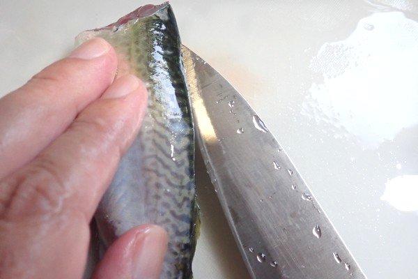 SiSO-LAB☆釣り サバの捌き方。背開きにするよ。