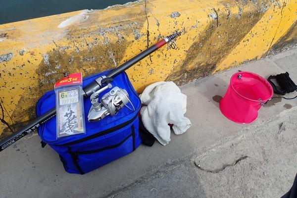 SiSO-LAB☆釣り RISEWAY 白スキンサビキ 3枚組 6号でサバ21cm釣れたよ。コマセが無いとシンプル。