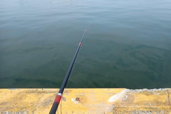 SiSO-LAB☆釣り RISEWAY 白スキンサビキ 3枚組 6号でサバ21cm釣れたよ。今日は釣れないな~。