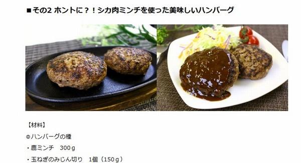 SiSO-LAB☆ふるさと納税・ジビエ・岐阜県山県市・シカ肉約1.1kg。レシピ紹介もあるよ。