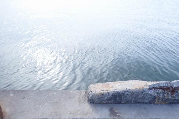 SiSO-LAB☆近場の釣りポイント。
